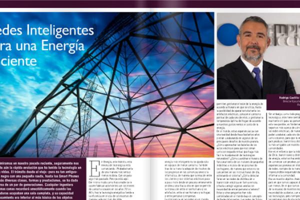 Rodrigo Castillo M. - Director Ejecutivo Empresas Eléctricas A.G.