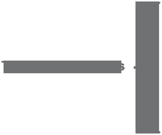 TEMAS-ESTRATEGICOS