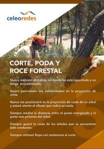 Corta Poda y Roce Forestal